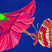 Hibiscus And Butterfly Art Print