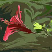 Hibiscus Dark And Light Photopainting 1 Art Print