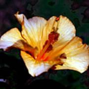 Hibiscus Heat Art Print