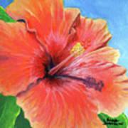 Hibiscus Passion Art Print
