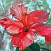Hibiscus Rouge Art Print
