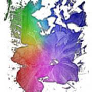 Hibiscus S D Z 2 Cool Rainbow 3 Dimensional Art Print