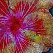 Hibiscus Stained Glass Art Print