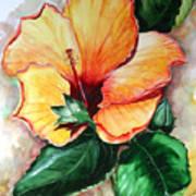 Hibiscus  Sunny Art Print