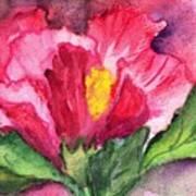 Hibiscus Unfolding Art Print