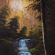 Hidden Brook Art Print by C Steele