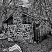 Hidden Cabin Art Print
