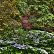 Hidden Stairs Art Print