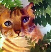 Hide And Seek Cat Art Print