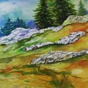 High Country Boulders Art Print