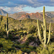 High Desert Peaks Art Print