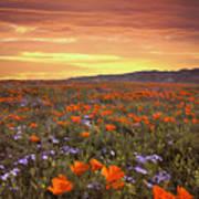 High Desert Sunset Serenade Art Print