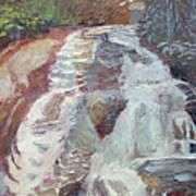 High Falls Dupont Forest Art Print