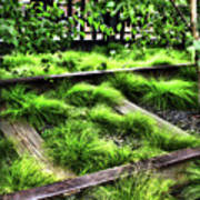 High Line Nyc Railroad Tracks Art Print
