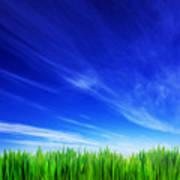 High Resolution Image Of Fresh Green Grass And Blue Sky Art Print