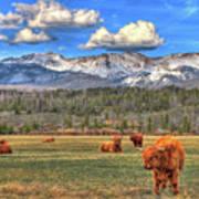 Highland Colorado Art Print