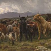 Highland Raid Art Print