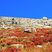 Hikers And Autumn Tundra On Mount Yale Colorado Art Print
