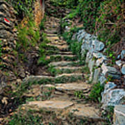 Hiking In Cinque Terre Italy Art Print