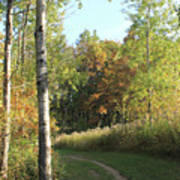 Hiking Trail In Autumn Sunset Art Print