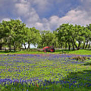 Hill Country Farming Art Print