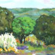 Hill Country II Art Print