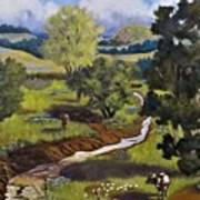 Hill Country Pasture Art Print