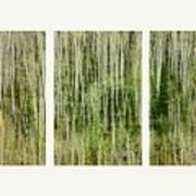 Hillside Forest Print by Priska Wettstein