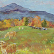 Hillside Grazing Art Print