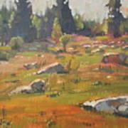 Hillside Patterns Art Print