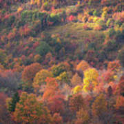 Hillside Rhythm Of Autumn Art Print
