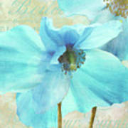 Himalayan Blue Poppy Art Print