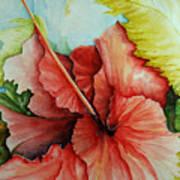 Hiroko's Hibiscus 2 Art Print