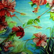 Hiroko's Hibiscus 4 Art Print