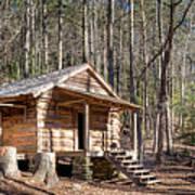 Historic Cabin Art Print
