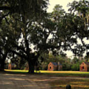 Historic Slave Houses At Boone Hall Plantation In Sc Art Print