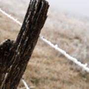 Hoarfrost And Fence Art Print