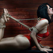 Hogtied - Fine Art Of Bondage Art Print