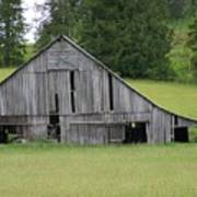Holey Old Barn  Washington State Art Print