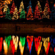 Holiday Evergreen Reflections Art Print