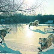 Holidays On Ice Art Print