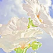 Hollyhocks And Sky Art Print