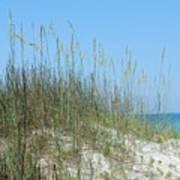 Holmes Beach Florida Art Print