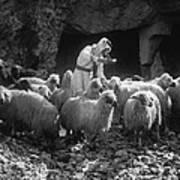 Holy Land: Shepherd, C1910 Art Print