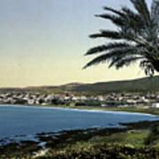 Holyland - Mount Carmel Haifa Art Print