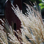 Home Behind The Grass Art Print