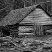 Home In The Woods Bw Art Print