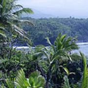 Honomaele Near Mokulehua At Hale O Piilani Heiau Hana Maui Hawaii Art Print