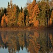 Hooker Lake Reflections Art Print