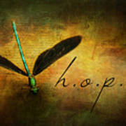 Hope Ebony Jewel Wing Damselfly On Golden Sunlight Dragonfly Art Print